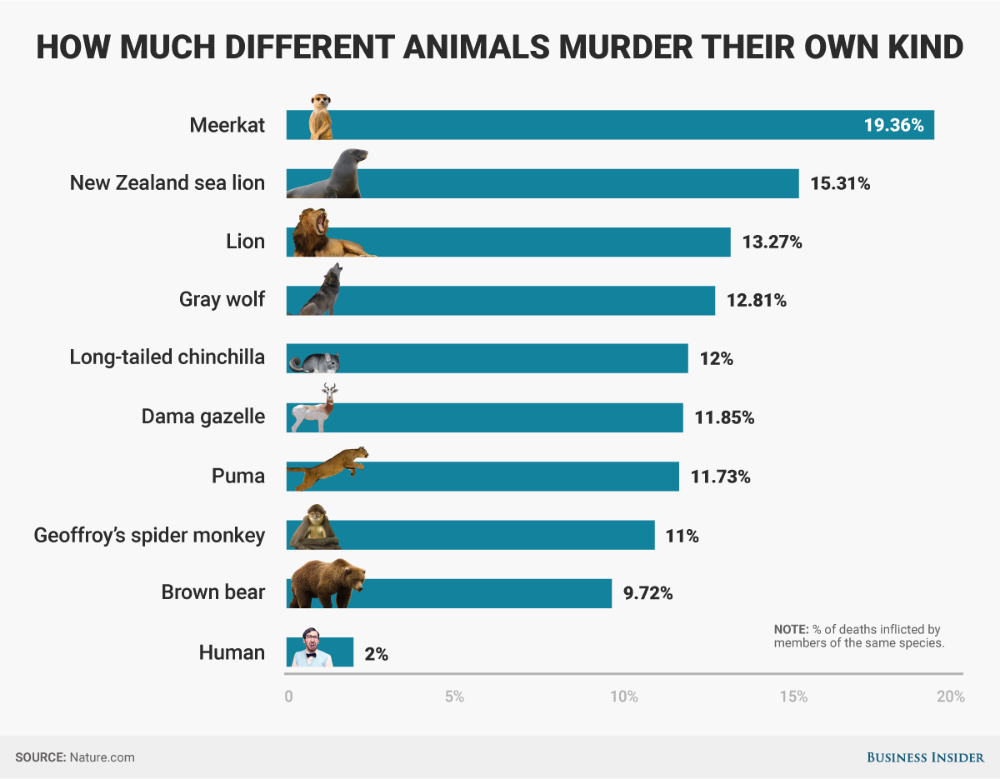 bi-graphics_murderous-animal-percentages.png